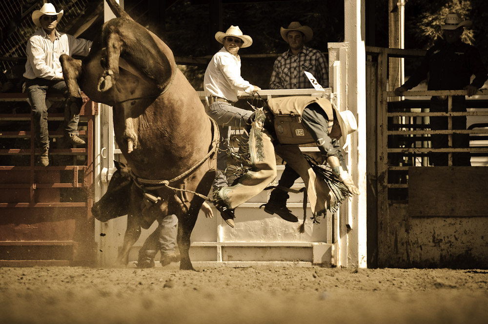 Driscoll Ranch Rodeo. Bull Rider.