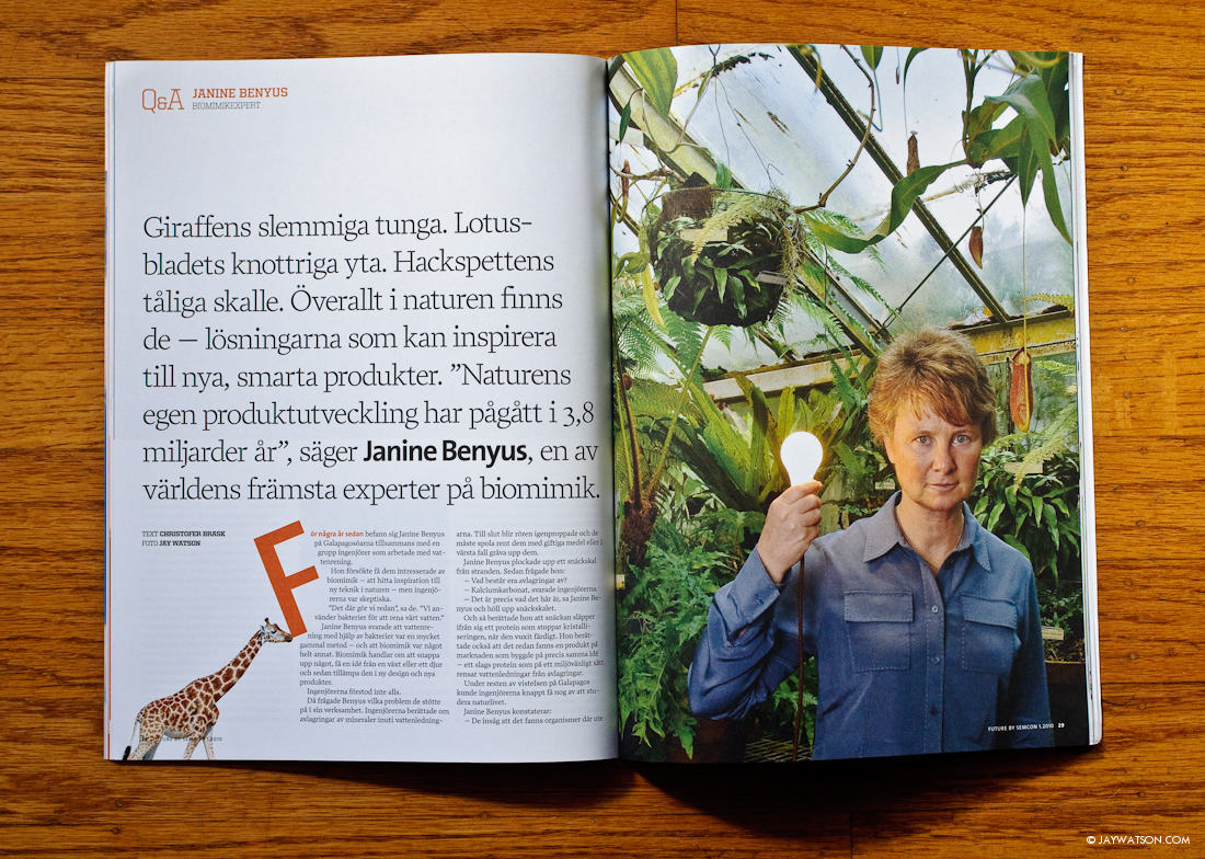 Biologist Janine Benyus Portrait | For French and Swedish Magazines