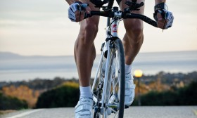 Lifestyle, Sports, & Fitness Shoot