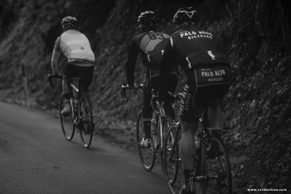 Cycling up Old La Honda, a classic climb in Palo Alto, CA. (9)