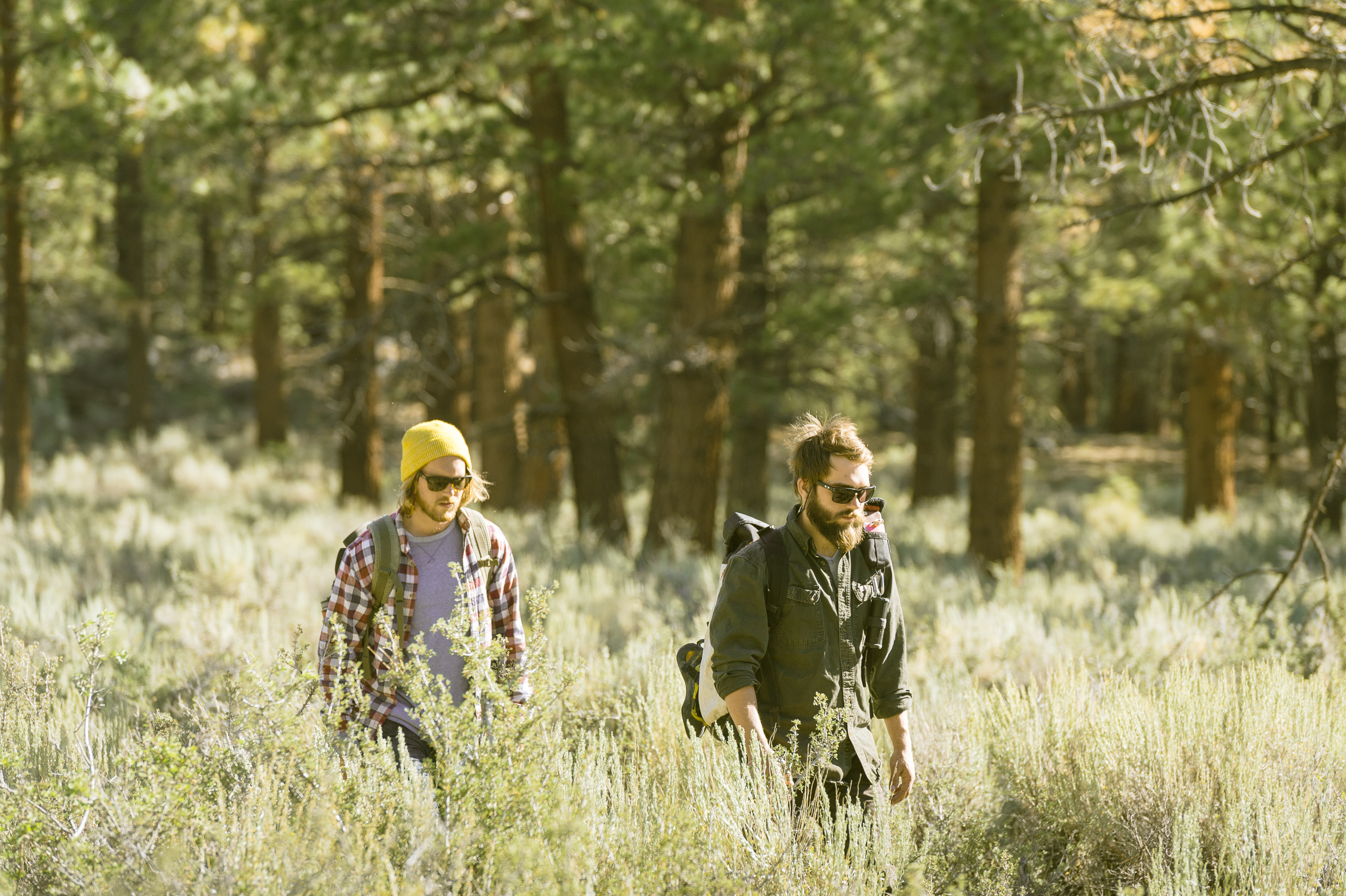 Video: The Forrer Brothers at Mammoth Lakes, CA