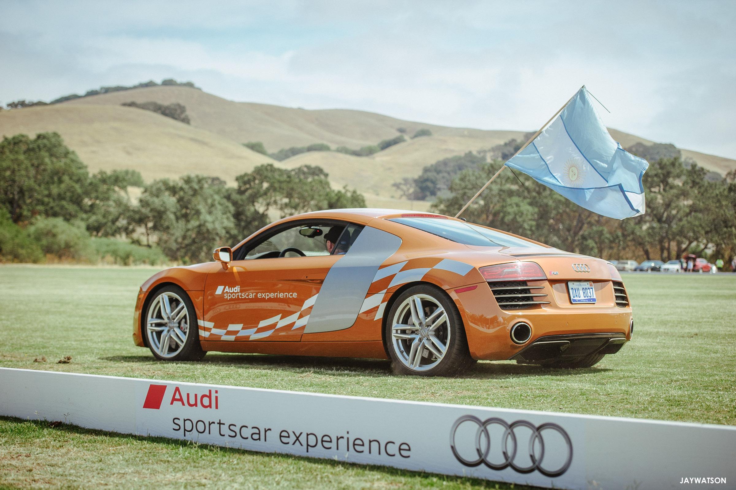 San Francisco Polo Classic. Petaluma, CA | Audi sporstcar experience