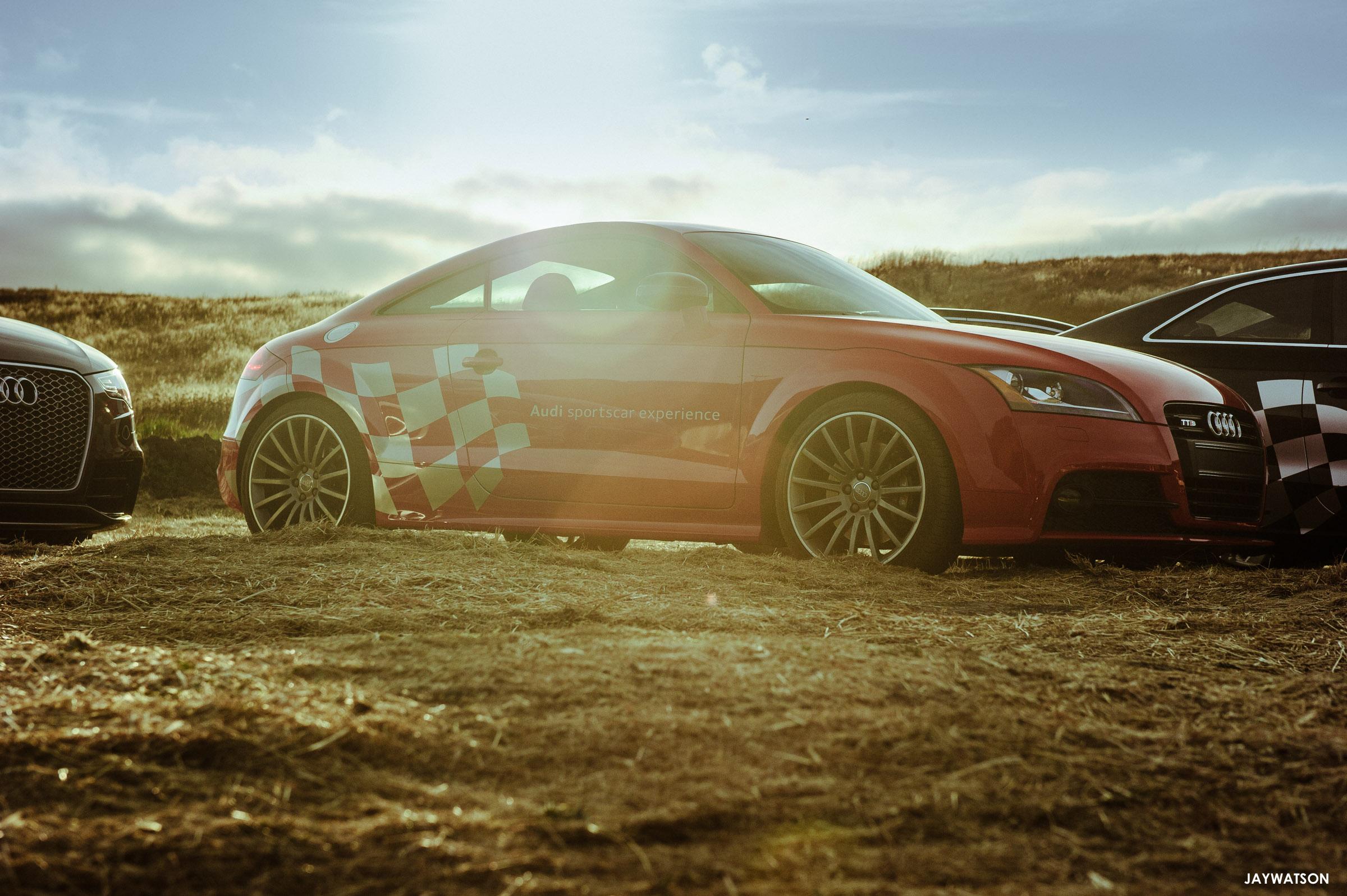 San Francisco Polo Classic Petaluma CA Audi Sporstcar Experience - Audi sf
